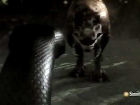 Titanoboa vs t Rex Titanoboa vs t Rex