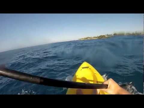 To The Sea - Kayaking Kona Hawaii