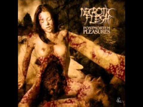 Dying fetus full album