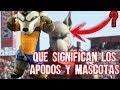 El Origen de Todos los Apodos y Mascotas del Futbol Mexicano y su EXPECTATIVA REALIDAD Boser Salseo