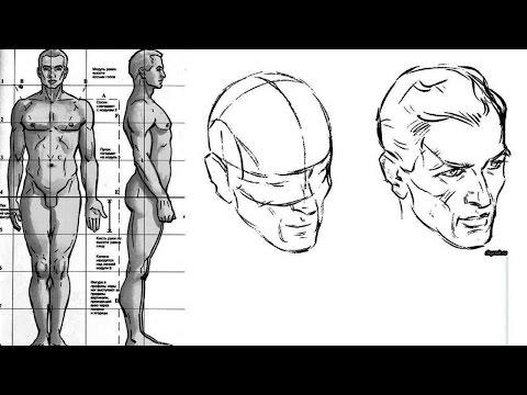 Видео как нарисовать толстого человека