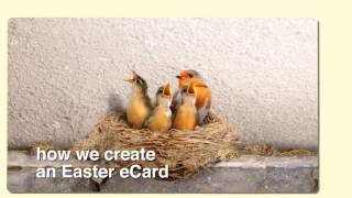 The Making of an Easter eCard
