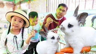 Bé Bún Cho Chuột Ăn Rau – Bé Bắp Cho Thỏ Ăn Cà Rốt