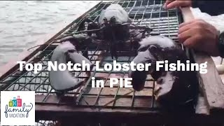 Top Notch Lobster Fishing in Prince Edward Island
