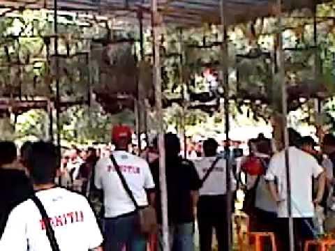 Lomba Burung Berkicau Presiden Cup 2 2012 video