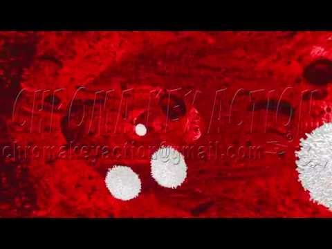 Red White  Cells Proteins Plasma Blood Animation 2014