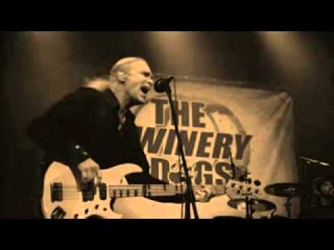 Music video THE WINERY DOGS LIVE Not Hopeless - Music Video Muzikoo