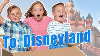 We Mailed Ourselves to Disneyland And It Worked!  Full Video! (skit) Kids Fun TV Family Vacation