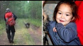 Një 4-vjeçare zhduket, por pas 9 ditësh qeni kërkon që ta ndjekin , befasuese ajo që gjetën në pyll