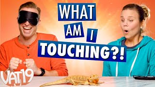 BLINDFOLDED Touching Challenge! Is that a CACTUS?!