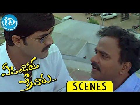 Evandoi Srivaru Movie Scenes || Srikanth, Sneha, Venu Madhav at Cinema Theatre Comedy Photo Image Pic