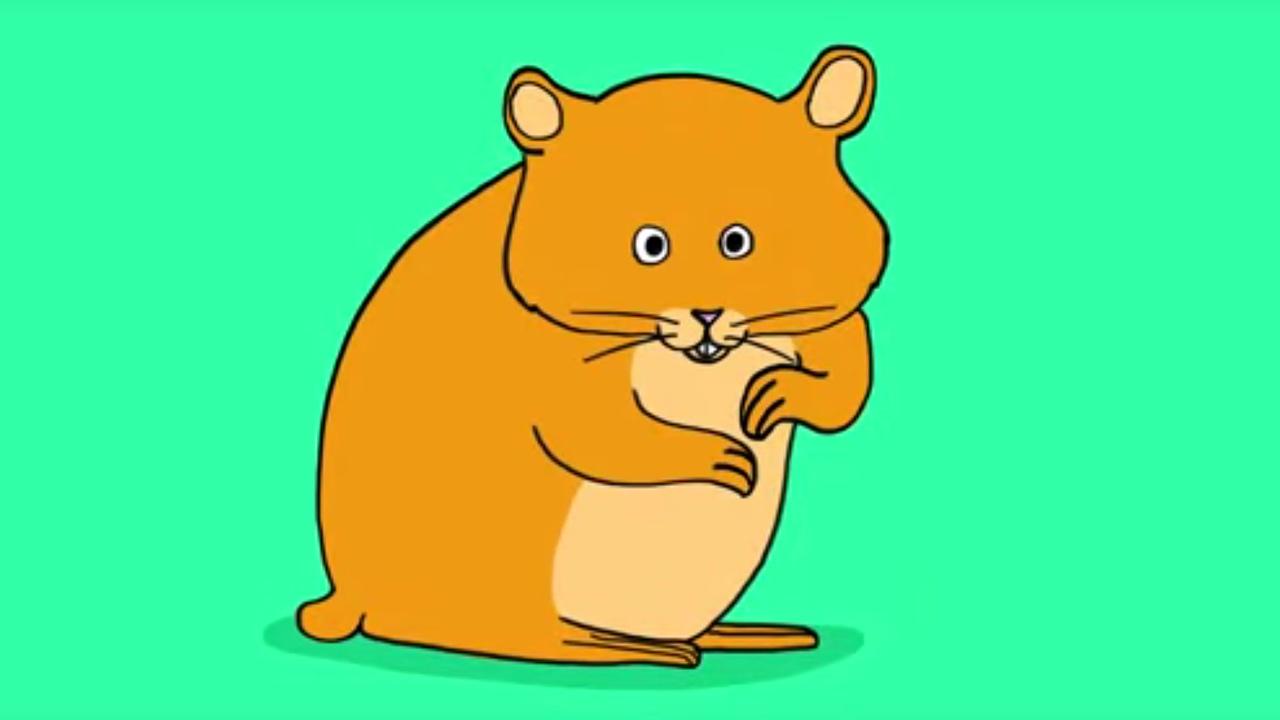 apprendre a dessiner un hamster