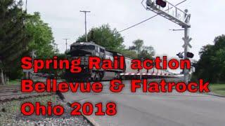 Spring Rail action Bellevue & Flatrock Ohio 2018