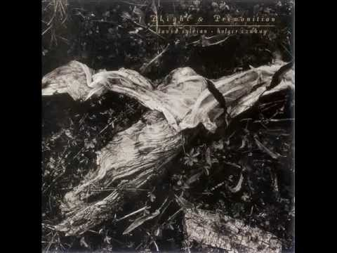 David Sylvian and Holger Czukay - Plight (The spiralling of winter ghosts)