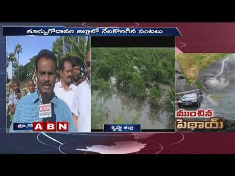 Crops Damaged due to Massive Rains in AP | Pethai Cyclone | ABN Telugu