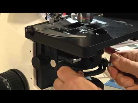 Koehler Illumination Microscope