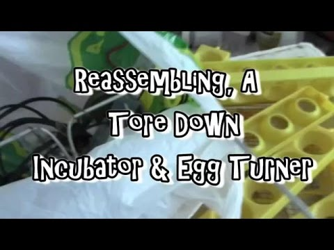 Assembling A Tore Down Incubator