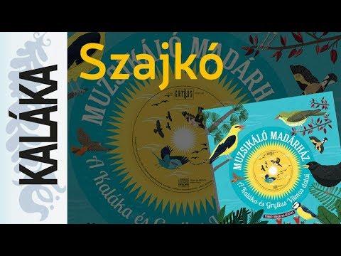 Weöres Sándor: Szajkó | Muzsikáló madárház - A Kaláka és Gryllus Vilmos dalai