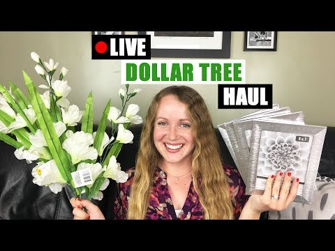 LIVE DOLLAR TREE HAUL Mostly DIY Home Decor Supplies For Upcoming Dollar Tree DIYs