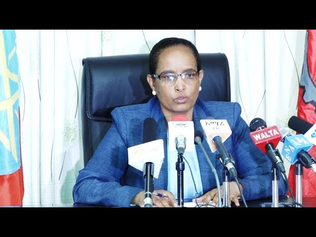 Ethiopia: A New Chairperson of the EPRDF and Vice Chairperson will be elected Fetlework Gebregziabhe