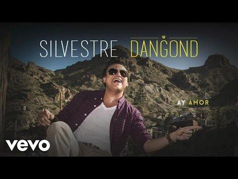 Silvestre Dangond - Ay Amor (Cover Audio)