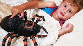🎶 INCY WINCY ARAÑA PEQUEÑITA 🎶 Itsy Bitsy Spider Español | Canciones Infantiles | LetsgoMartin