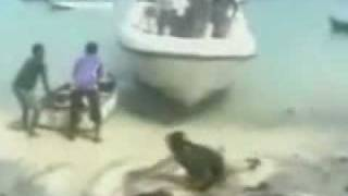 Bad Jump Off Boat
