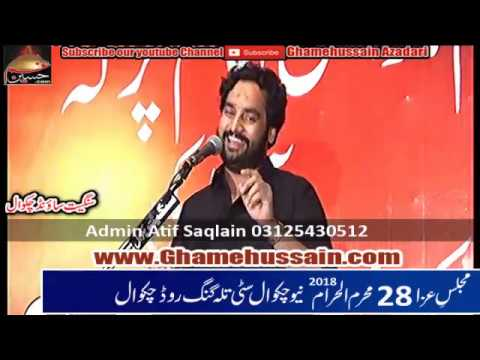 Zakir Waseem Abbas Baloch | Baramdgi Taboot Imam Sajjad as | 28 Muharram 2018 | New Chakwal City