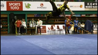 12th World Wushu Championships, Men Gunshu MAC Jia Rui 賈瑞 9.67