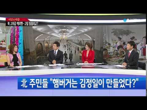 평양에 부는 자본주의 바람...달라지는 북한 [강명도, 교수·박세영, 북한민속예술단원] / YTN