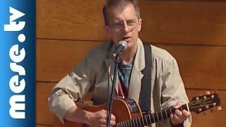 Huzella Péter: Somvirág (koncert részlet)