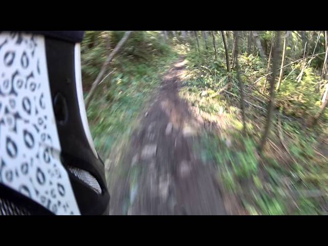Exit 38 Downhill Mountain Biking