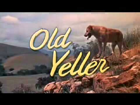 Old Yeller (What I'd Have Changed)
