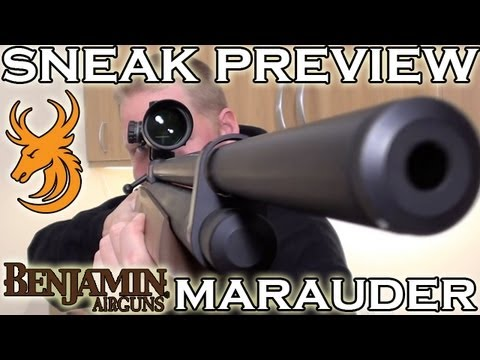 Benjamin Marauder Hunting Airgun