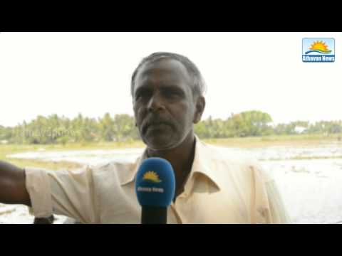 Continue to get water to agriculture: tampalakama farmers