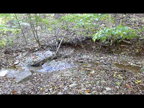 Murphy Farm Trail Creek Video