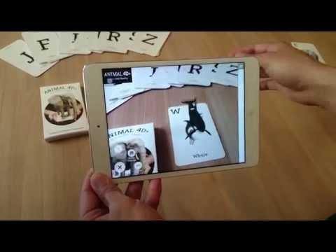 Flash Card Animal 4D Octagon Studio
