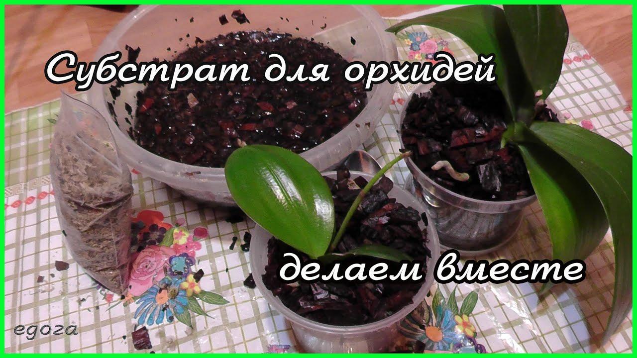 Как приготовить грунт для орхидей своими руками видео