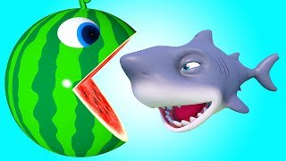 Pacman Watermelon roll around river meets a shark he eats fruits and found surprise toys on farm