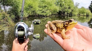 EXPERIMENT: FISHING WITH LIVE FROGS!!! (Surprising Results)