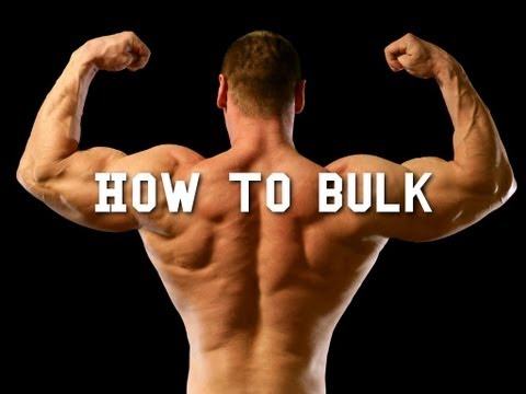 Gain Weight - Macros for Bulking Made Simple