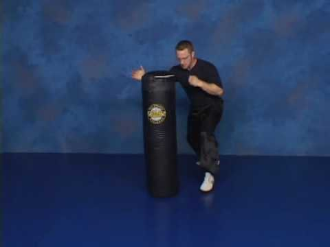 Combat Sanshou - Part 1: Striking, DISC TWO Image 1