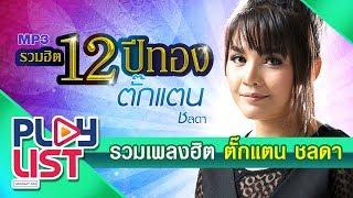 Download Lagu รวมเพลงสุดฮิต ตั๊กแตน ชลดา Gratis STAFABAND