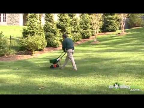 How to Apply a Lawn Fertilizer