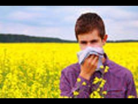 Allergies How To Deal With It