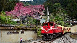 阿里山森林鐵路 「嘉義~奮起湖」( 影片以3倍速播放 )