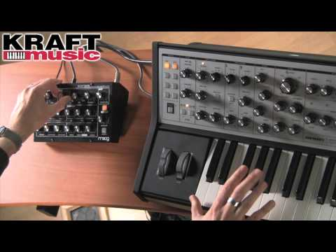 Kraft Music - Moog Minitaur Demo with Jake Widgeon