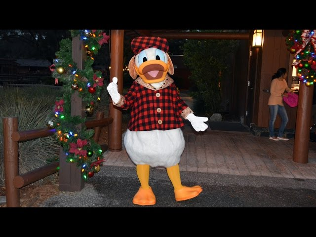 Donald Duck Meets us Christmas Eve at Disney's Fort Wilderness Campground