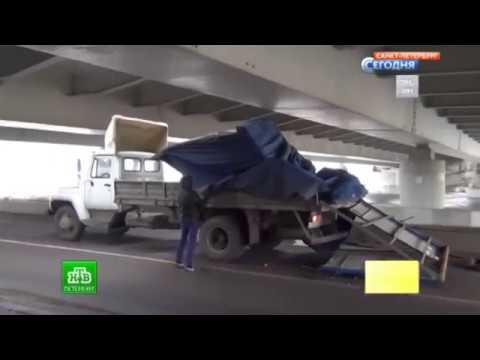 Мост глупости в Санкт Петербурге