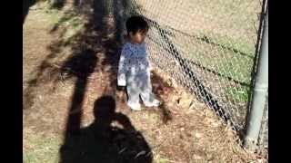 20121112.Ashton terrorizes animals at Almansor Park